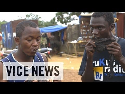 Monkey Meat and the Ebola Outbreak in Liberia | Ebola Pandemic Survival