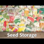 How to Save and Store Seeds Properly