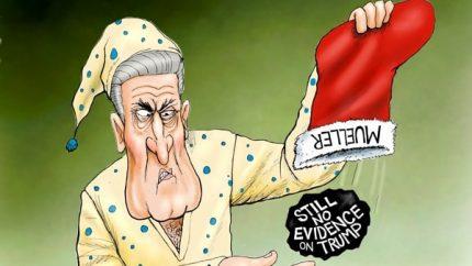Mueller Crashes
