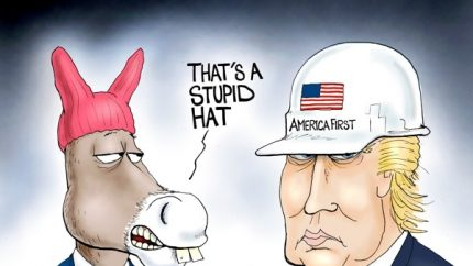Dems Stupid Hat